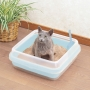 IRIS CA-400N 貓用廁所(有砂隔)(41x41x15)