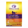 Wellness Complete Health G.F.Indoor(雞)11lbs8oz