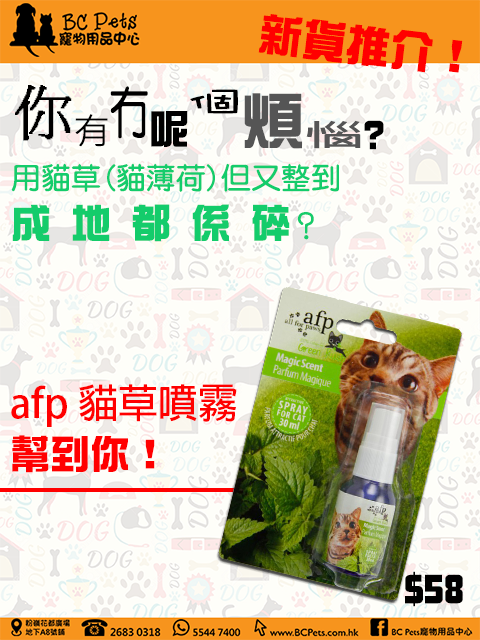 afp Magic Scent new product new price