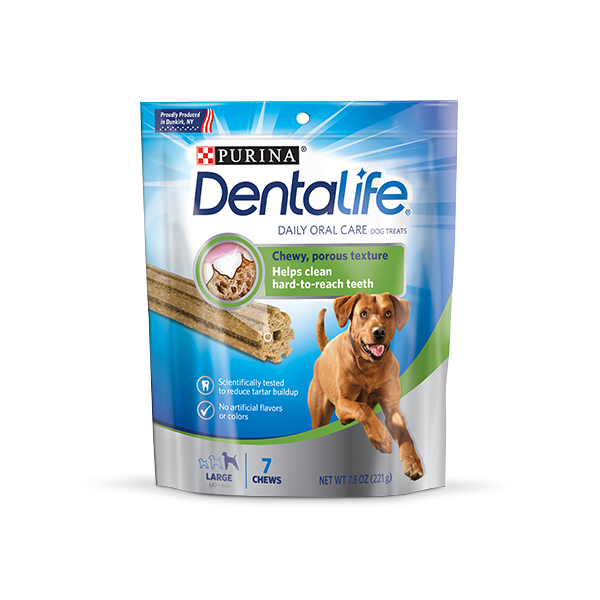 Dentalife-Large